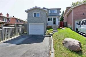 1+1 Bed Rm Basement Apt (No Living) Fully Independent- Ajax