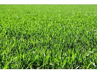 Lawn Mowing from £5!!