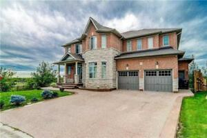 Absolute Show Stopper Approx. 5000 Sf Of Living Space!