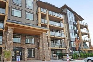 1 Bdrm available at 8026 207th Street, Langley