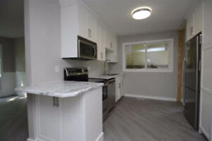 Basement suite for rent in St Albert for Oct/Nov 1