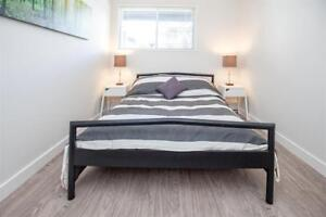 Don't Pay Until July & Save Up to $2,580* - 1 Bedroom – Elan