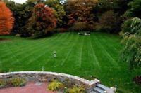 Lawn Care, Lawn Mowing, Property Maintanance, Handy Man Services