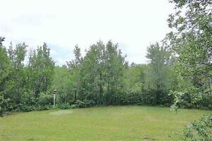 RARE Opportunity! Walkout Bungalow on Ravine Lot!
