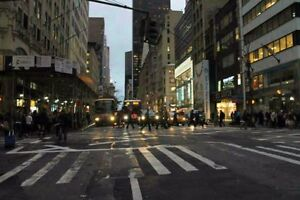 Food For Life New York City (NYC) Bus Tours - Starting at $899