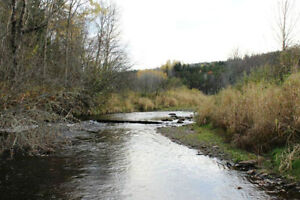 8.3 Acres Creek Front Property Sussex