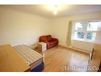 Spacious Studio – Separate Kitchen and Bathroom – Furnished/Unfurnished – Available Now – £1,300 PCM