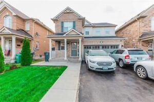 Open Concept 1 Bedroom Basement Apartment For Rent in Brampton!