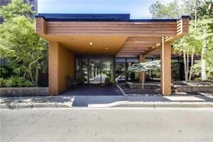 Sun Filled Large Spacious 1200 Sq Feet With Large Windows