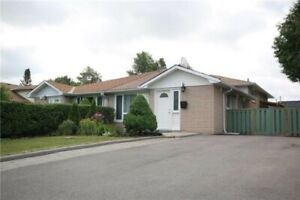 Newly Renovated 1 BR Basement Apartment For Rent in Aurora