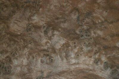Walnut Burl Raw Wood Veneer Sheet 8 X 12 Inches 142nd  Thick   7368-6