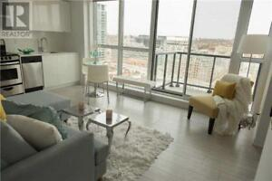 Modern Finishes,1+1Beds,2baths,51 EAST LIBERTY ST, Toronto