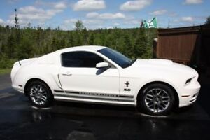 2013 MUSTANG Beautiful Car  -  Ready for SUMMER
