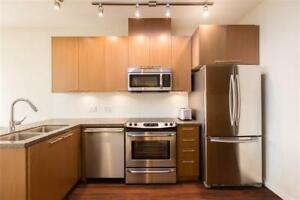 Beautiful penthouse 1 BR + parking - Victoria Dr & E 54th Ave