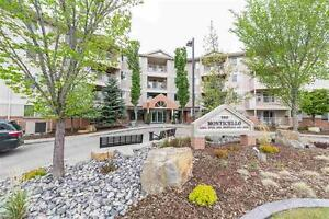TOP FLOOR 2 bedroom apartment style condo - #414 11511 27 AV NW