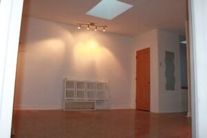 newly two bed room apt. dundas subway bloor roncesvalles high pk