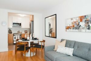 Newly Furnished 1Bdrm Apartment for Rent - West End