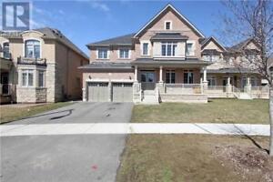 44 BERKWOOD HLLW Brampton, Ontario