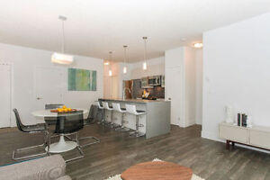 Executive style one bedroom condo - Close to Whyte Ave!!