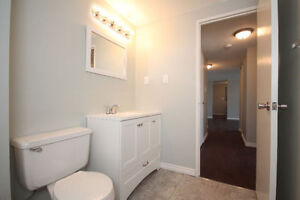 Newly Renovated 2 Bedroom (All Inclusive) Unit in Quiet Building Cambridge Kitchener Area image 6