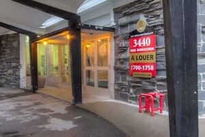 3 1/2 at 3440 Durocher Street, Montreal - available Nov 1st