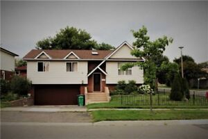 A Beautifully Renovation Detached Home Raised Bungalow!