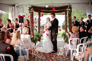 International Wedding Photographer - Worldclass - 50% Off Stratford Kitchener Area image 2
