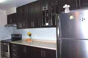 Amazing renovated 2 bed 2 bath condo Mississauga LRT line