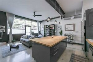 Stunning 1 bedroom loft with 11ft ceilings