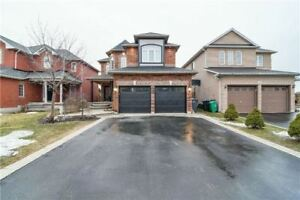 EXCELLENT 4 Bedroom Detached House @BRAMPTON $899,000 ONLY