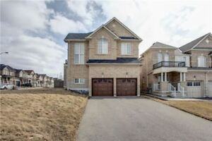 Stunning  Sun Filled Detached Home For Lease In Prime Patterson