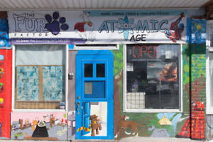 The Fur Factor, All breed pet grooming (Pape & Danforth)