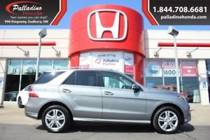 2014 Mercedes-Benz M-Class ML 350 BlueTEC - STYLE LUXURY AND MUC