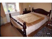 Double & Single Room immediatley available