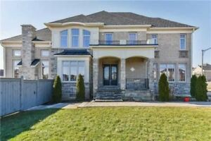 **ABSOLUTE SHOWSTOPPER** IN FINANCIAL DR AREA