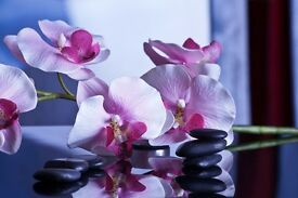 AMAZING 2 HANDS OR 4 HANDS MASSAGE IN CATFORD