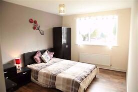 Huge double room in Mile End