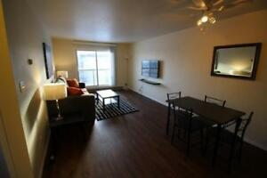 One Bedroom Furnished Suites - Everything Included