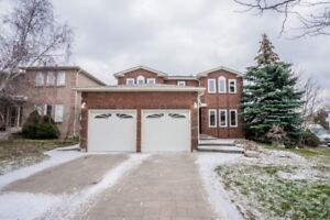Stunning Custom Renovated Detached in Top Rank High School Area