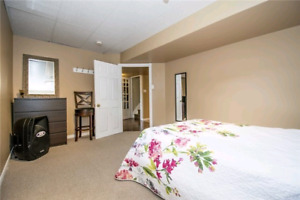 basement appartment for rent in waterloo