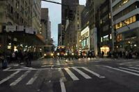 Food For Life NYC Bus Tours - Starting at $899