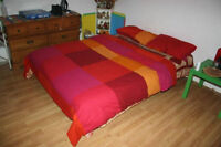 Sofa Bed/Futon with cover & matress