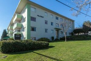 1 Bdrm available at 1303 Eighth Avenue, New Westminster