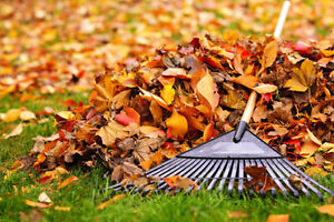 Fall cleaning and lawn mowing service 226-700-1484 London Ontario image 1
