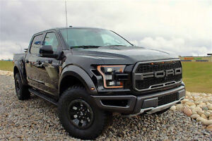 WANT A NEW RAPTOR TO DRIVE THIS WEEKEND, I HAVE 2 FOR SALE