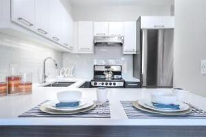 1 month FREE! Fully renovated, Downtown. Pool and terrace