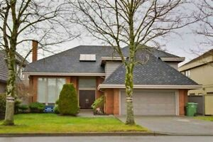 House near Steveston, walking to London secondary ,6 bed 4 bath