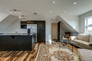 BEAUTIFUL LOFT FOR RENT - SKYVIEW ESTATES!