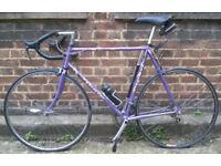 Road bike BATAVUS frame size 23inch REYNOLDS 501 , SHIMANO EXAGE- 14 speed serviced WARRANTY