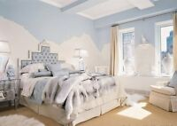 Promotion Alert! Discounted prices for Professional Painters
